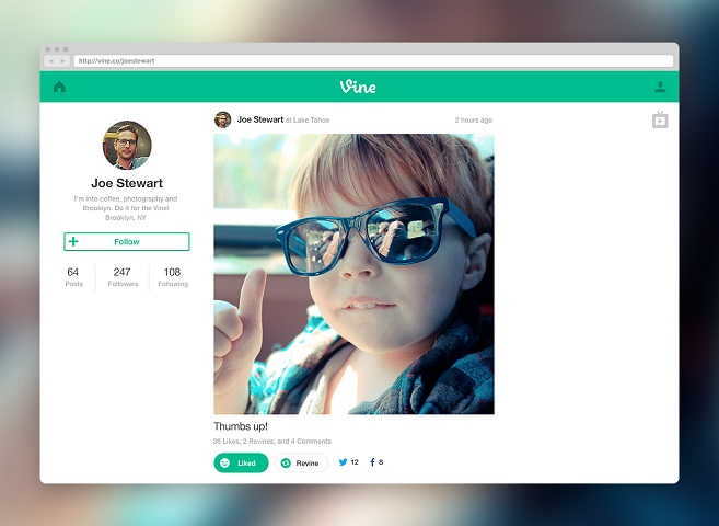 vine web profile