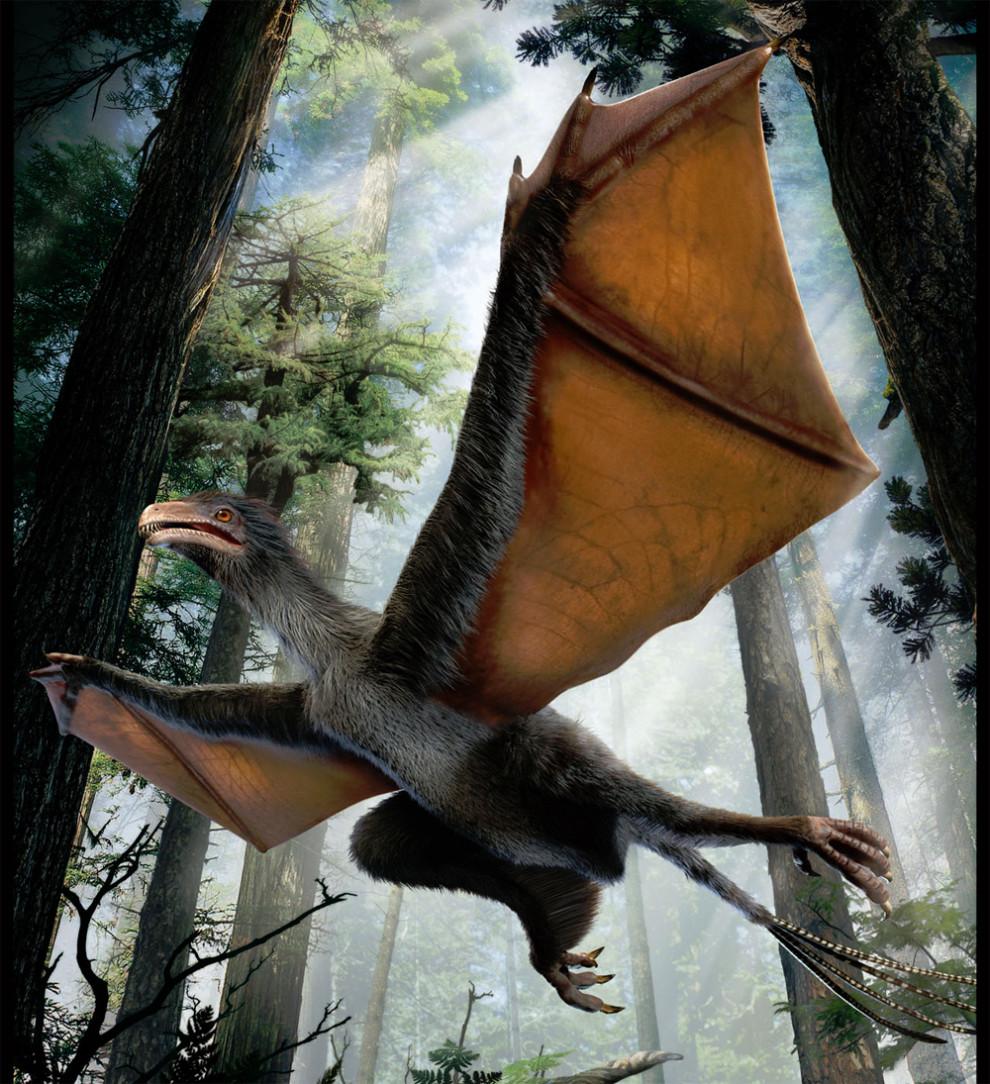 Dinosaur Yi