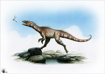 A reconstruction of how the dinosaur could have looked.