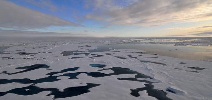 Melting Antarctic glaciers creating feeding 'hot spots', study shows