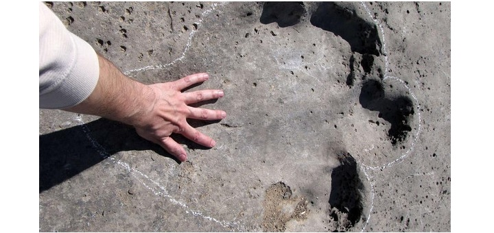 Scientists find unusually long trail of dinosaur footprints in Germany