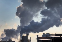 Carbon credits may not represent actual emission reductions: Study