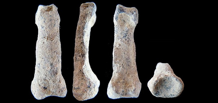 "Bone discovery pushes back oldest ""modern"" hand by 1.85 million years"