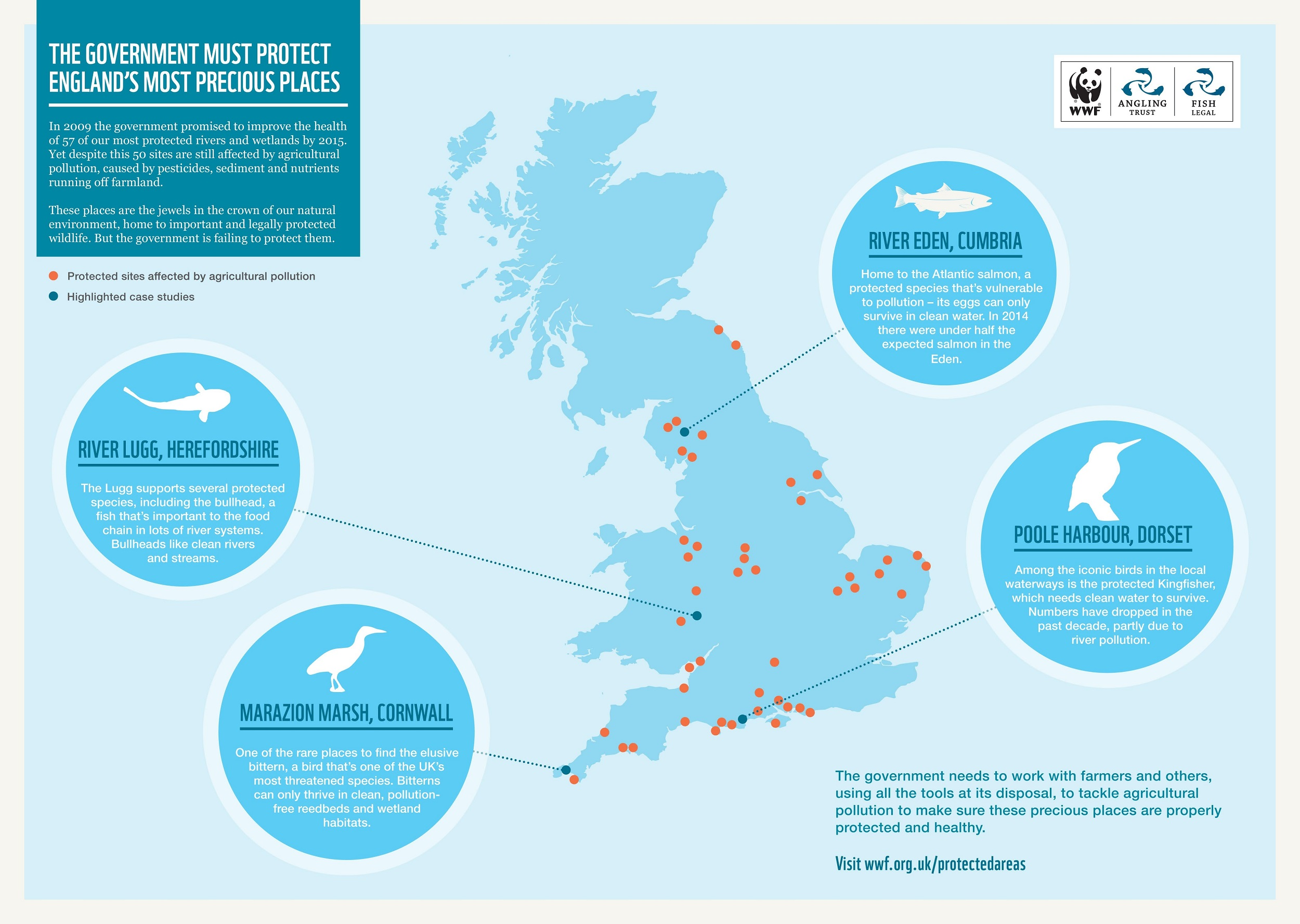 WWF to sue UK Gov